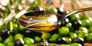 Olivenoel nachhaltig produziert